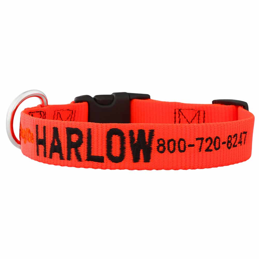 Embroidered Nylon Dog Collar Orange Black