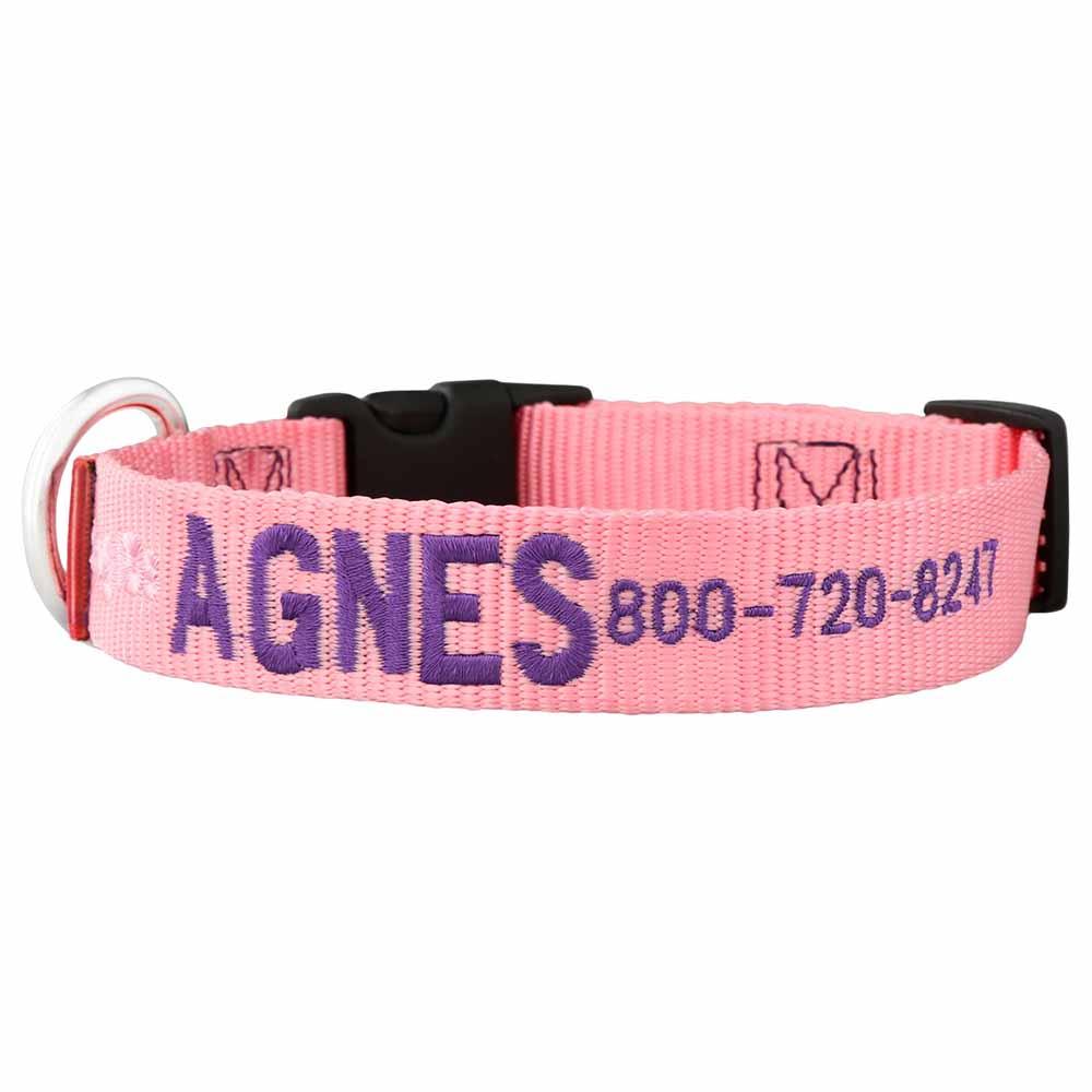 Embroidered Nylon Dog Collar Pink Purple