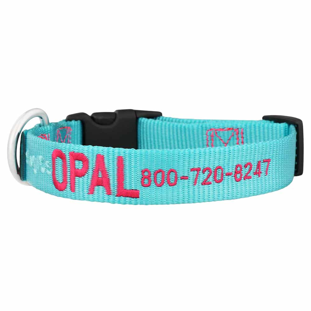 Embroidered Nylon Dog Collar Turquoise Hot Raspberry