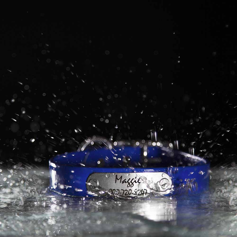 Waterproof Soft Grip Dog Collar with Personalized Nameplate in Water