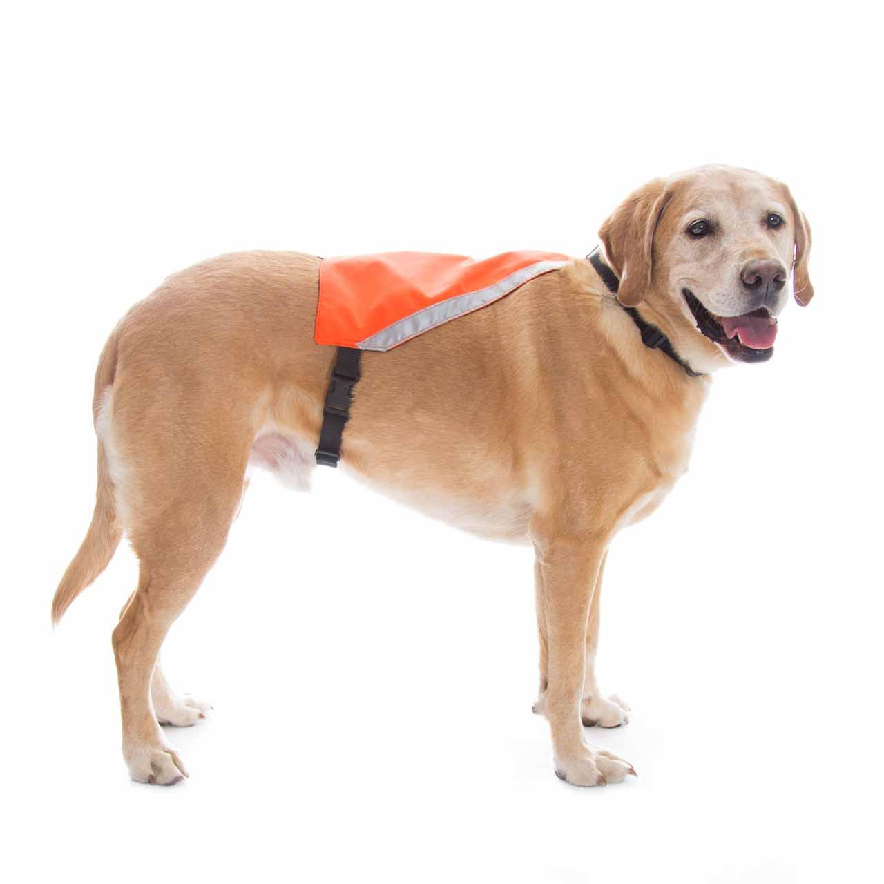 Mendota Visi-Vest Reflective Dog Vest