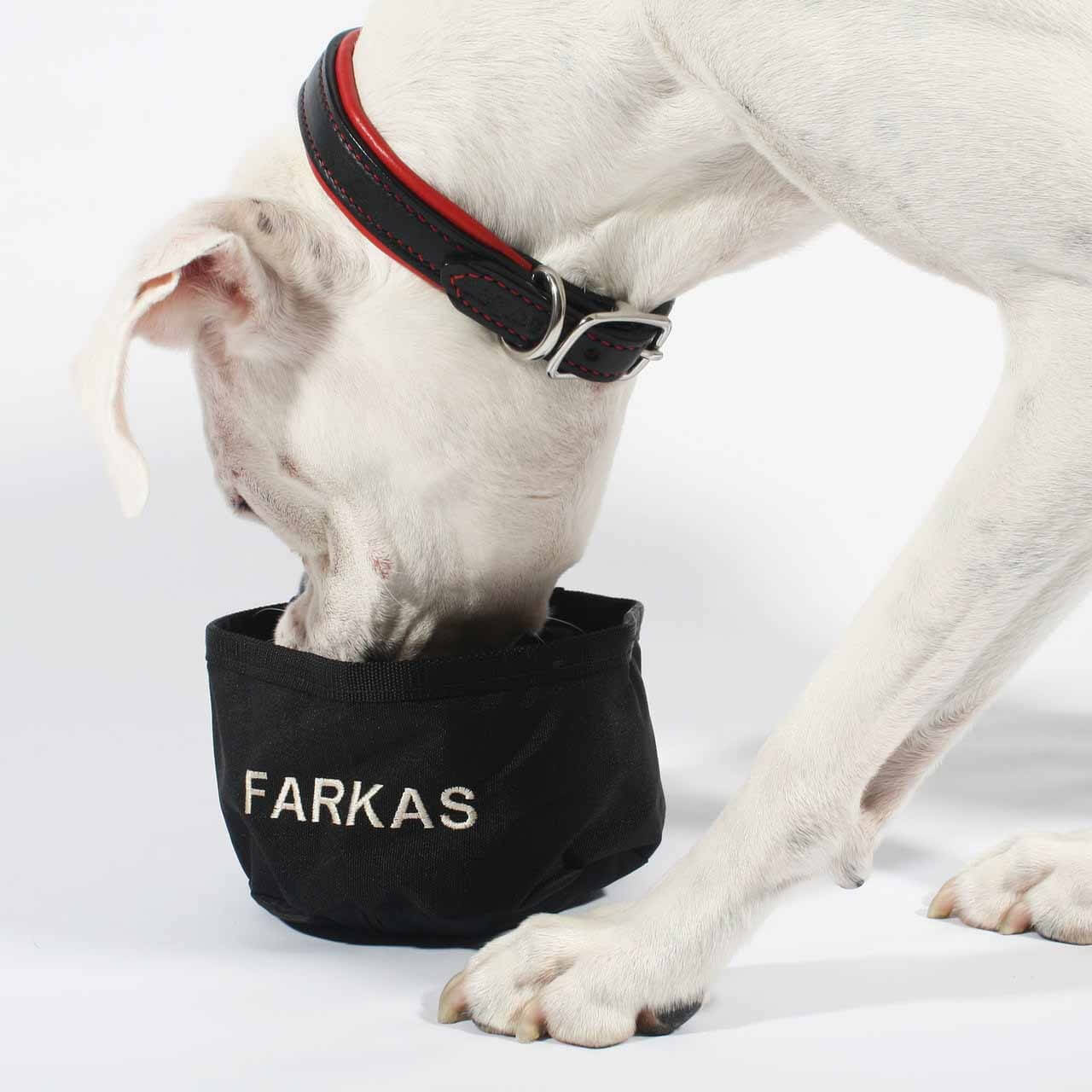 Personalized Ultra Compact-A-Bowl Dog Bowl - Dog Using It