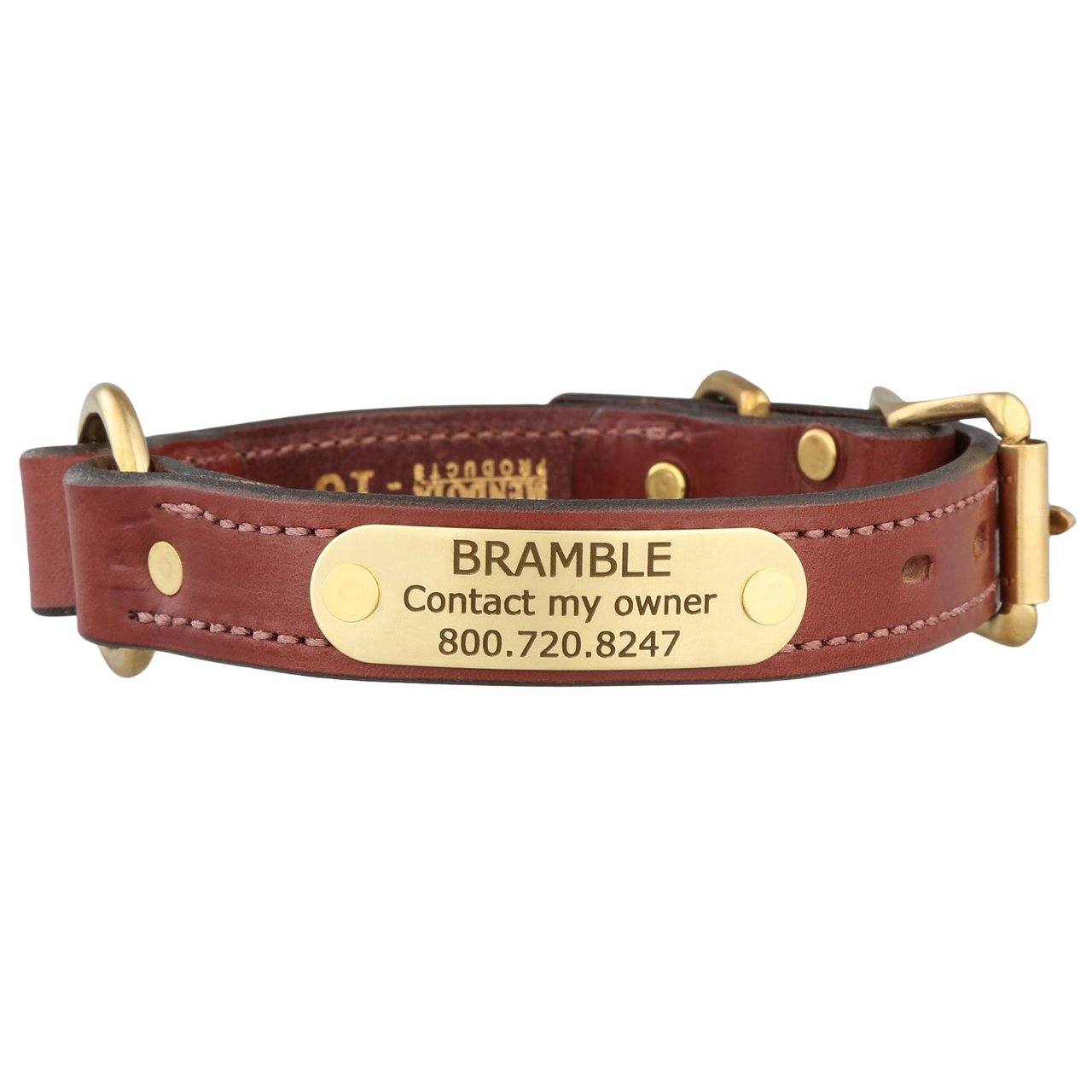 Mendota Leather Safety Collar with Personalized Nameplate