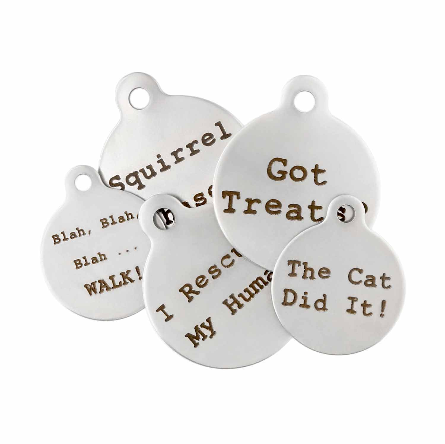 DogSpeak Pet ID Tags - Group Photo