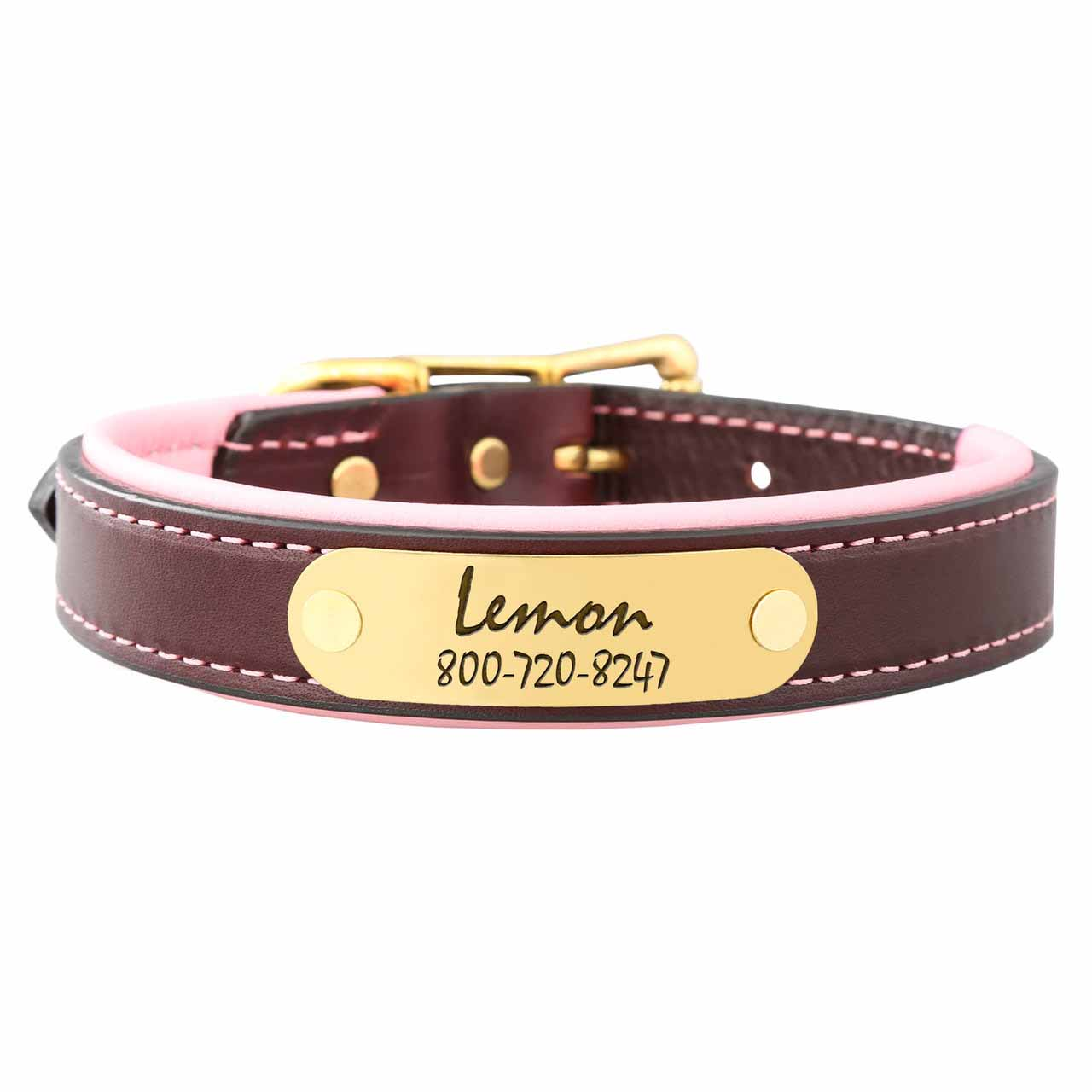 Padded Leather Collar with Nameplate Pink Brass