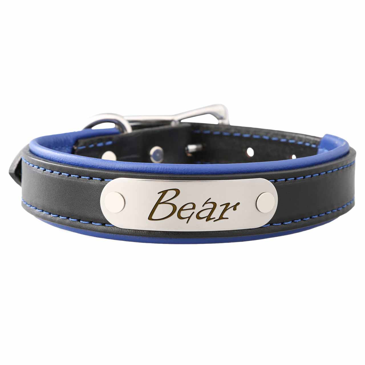 Padded Leather Collar with Nameplate Blue Stainless Steel