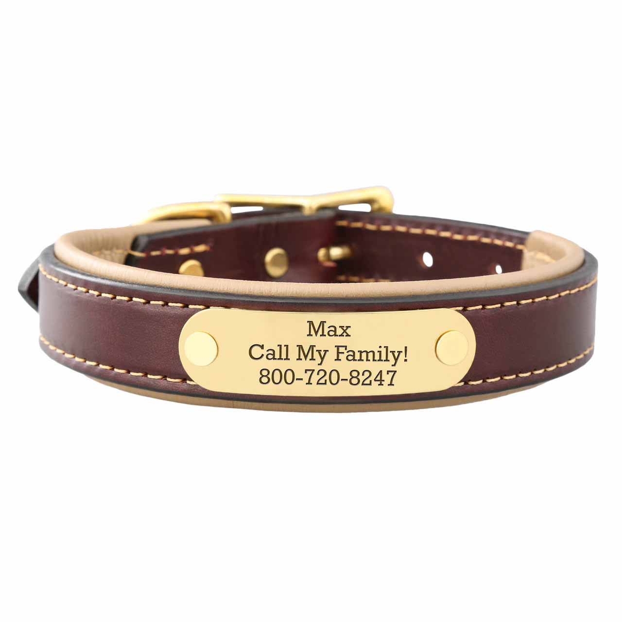 Padded Leather Collar with Nameplate Tan Brass