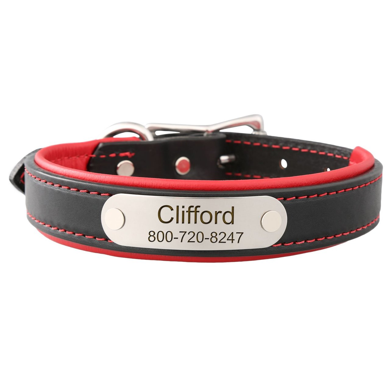Padded Leather Collar with Nameplate Red Stainless Steel