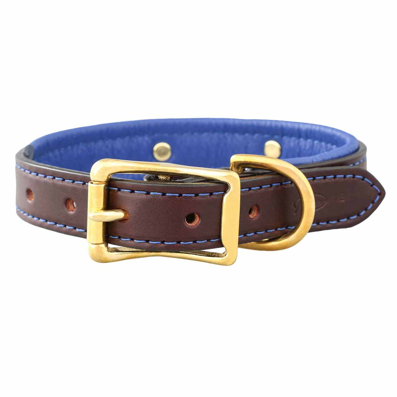 Padded Leather Collar with Nameplate Blue Brass Buckle View