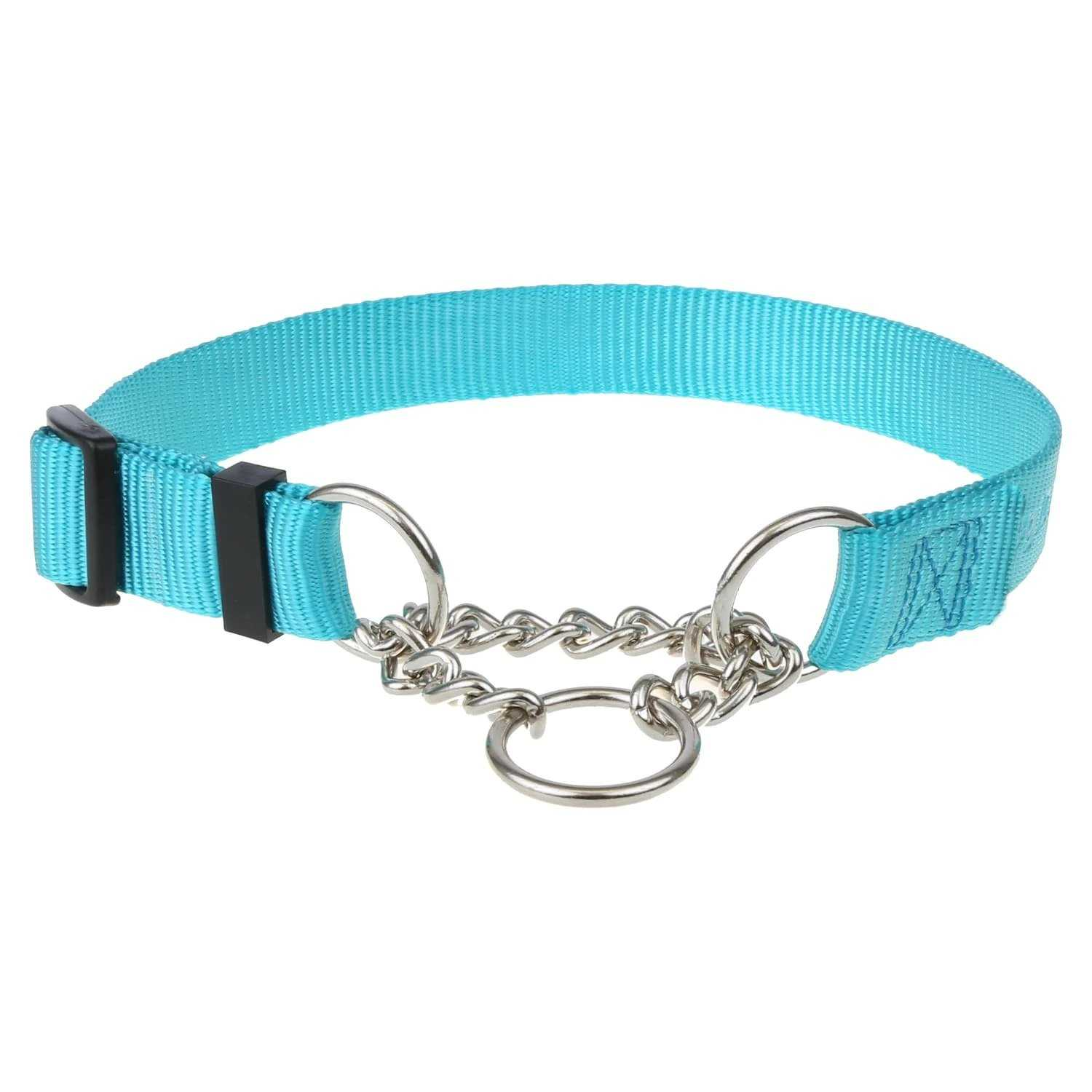 Turquoise Nylon Chain Martingale Collar