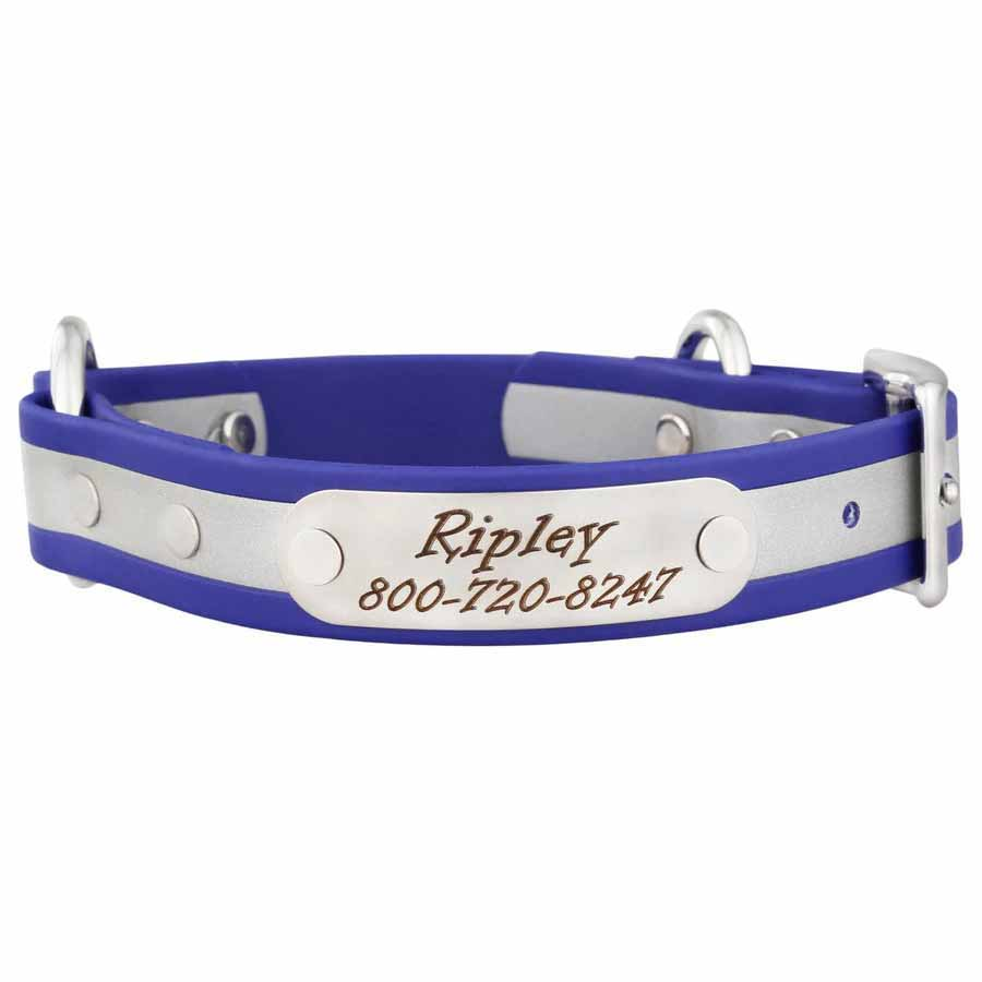 Personalized Waterproof Reflective Safety Dog Collar Blue Nameplate View