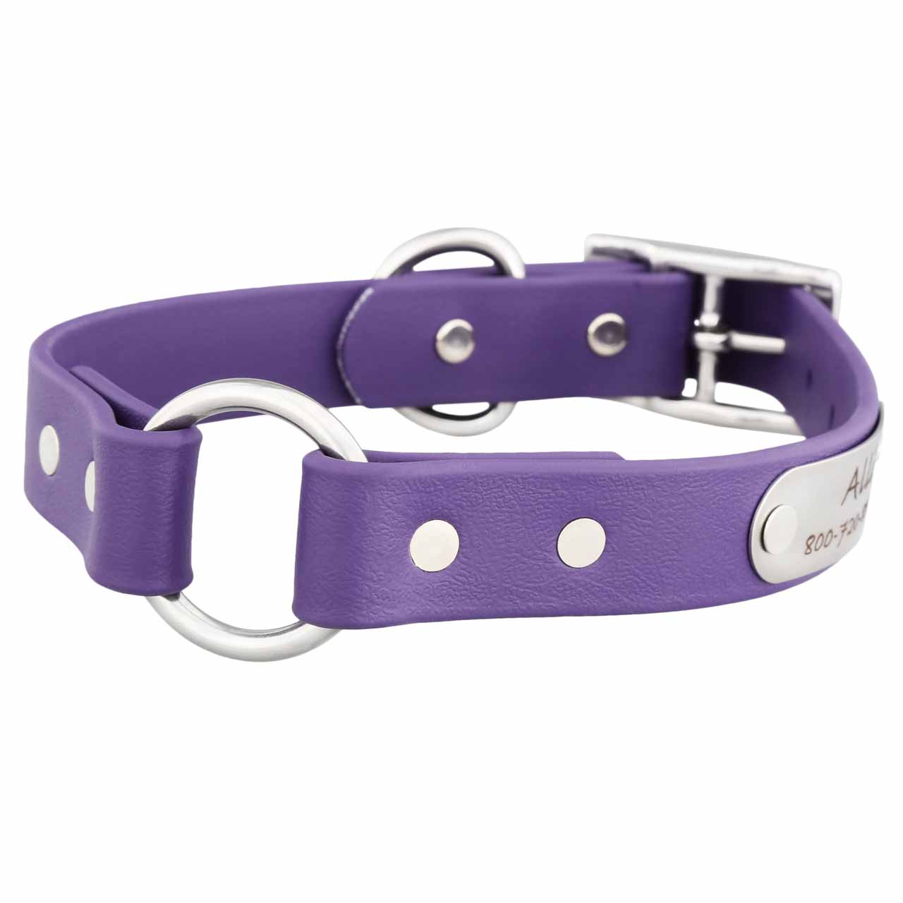 Waterproof Safety Collar with Personalized Nameplate Purple
