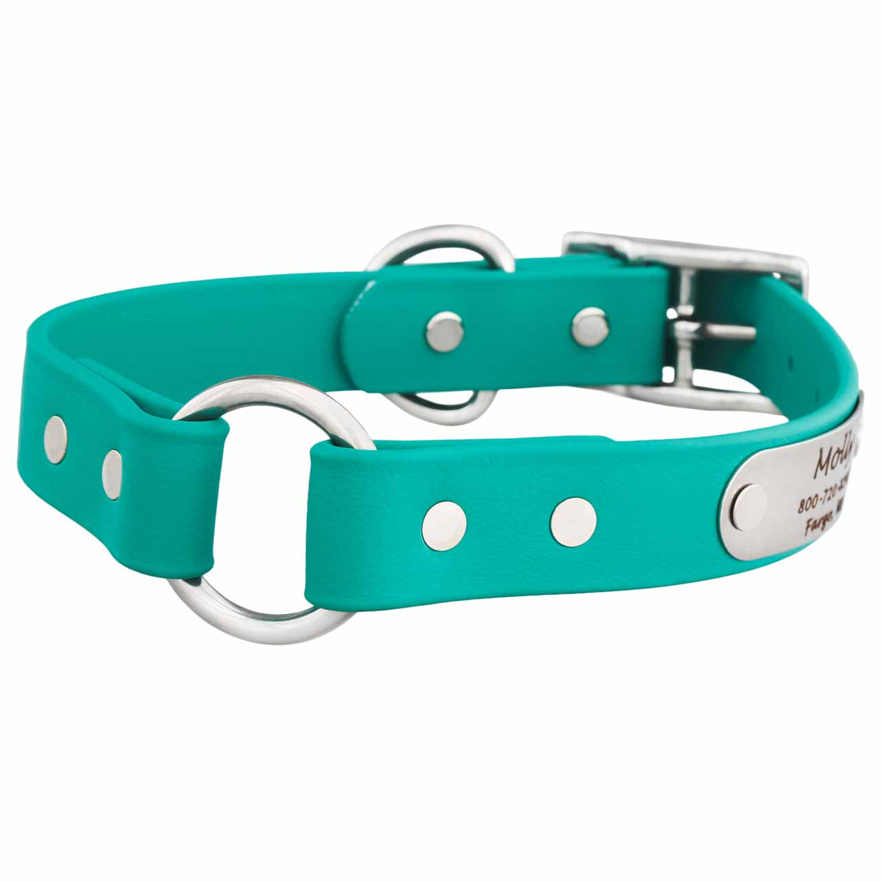 Waterproof Safety Collar with Personalized Nameplate Teal