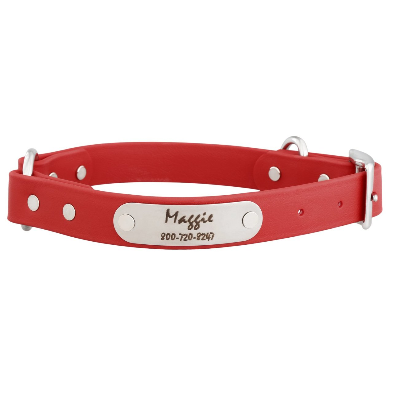 Waterproof Safety Collar with Personalized Nameplate Red
