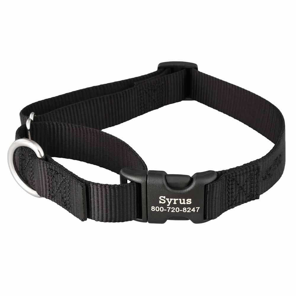 Martingale Dog Collar with Personalized Buckle Black