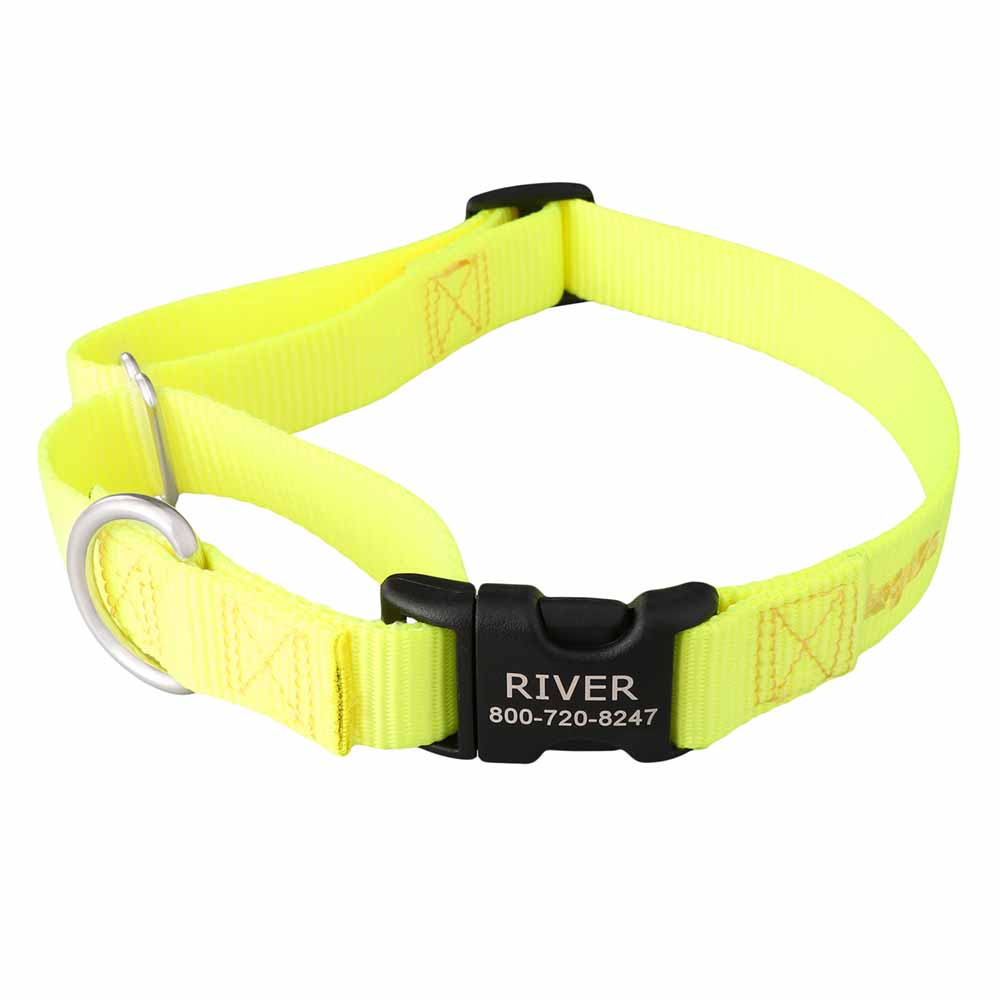Martingale Dog Collar with Personalized Buckle Yellow