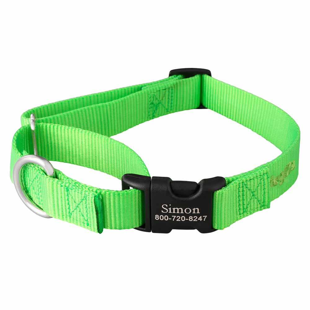 Martingale Dog Collar with Personalized Buckle Lime Green