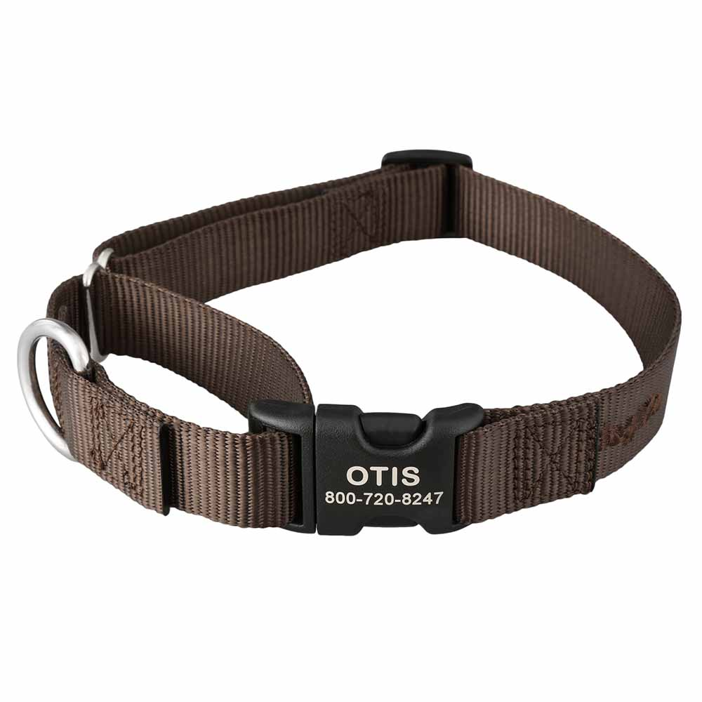 Martingale Dog Collar with Personalized Buckle Brown