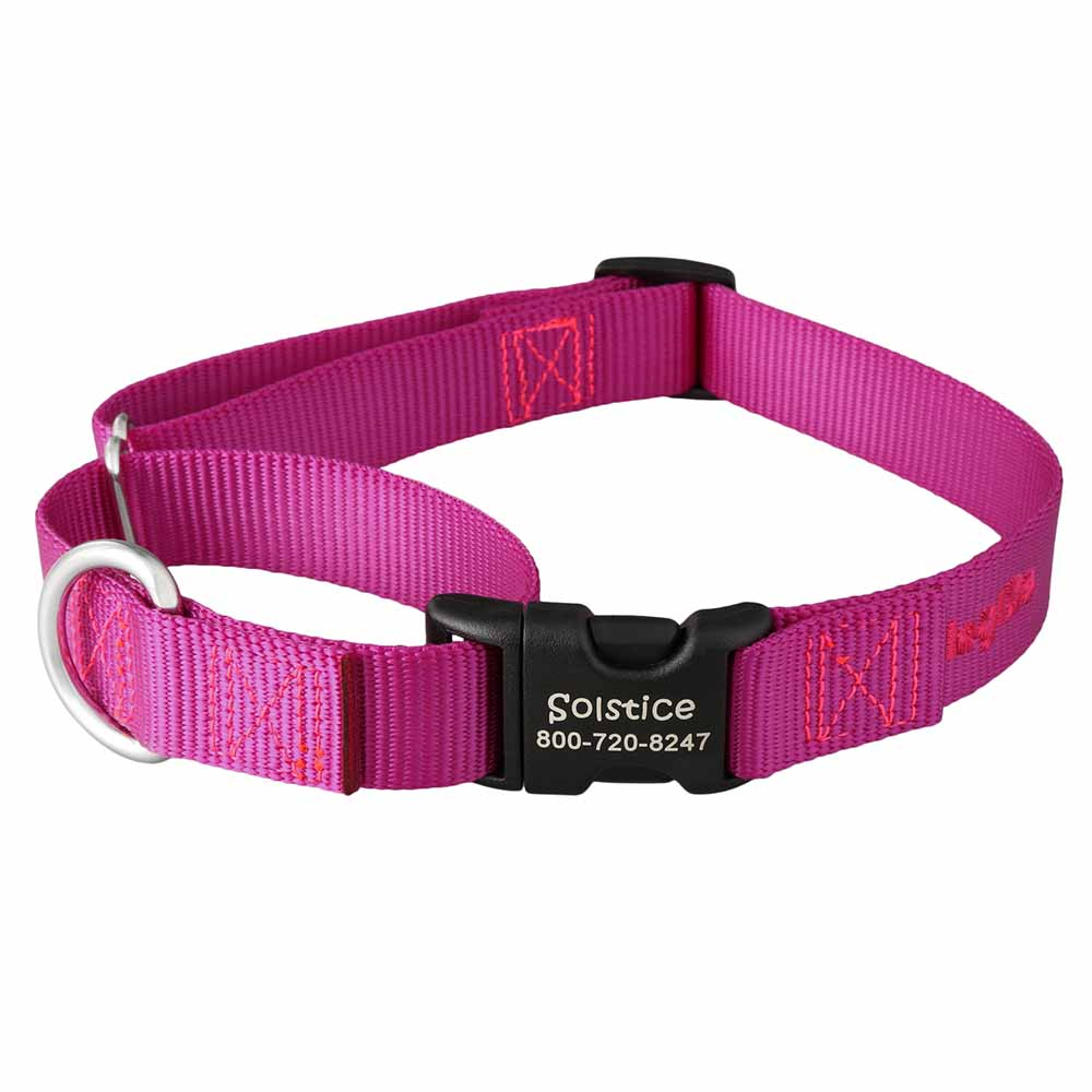 Martingale Dog Collar with Personalized Buckle Plastic Buckle