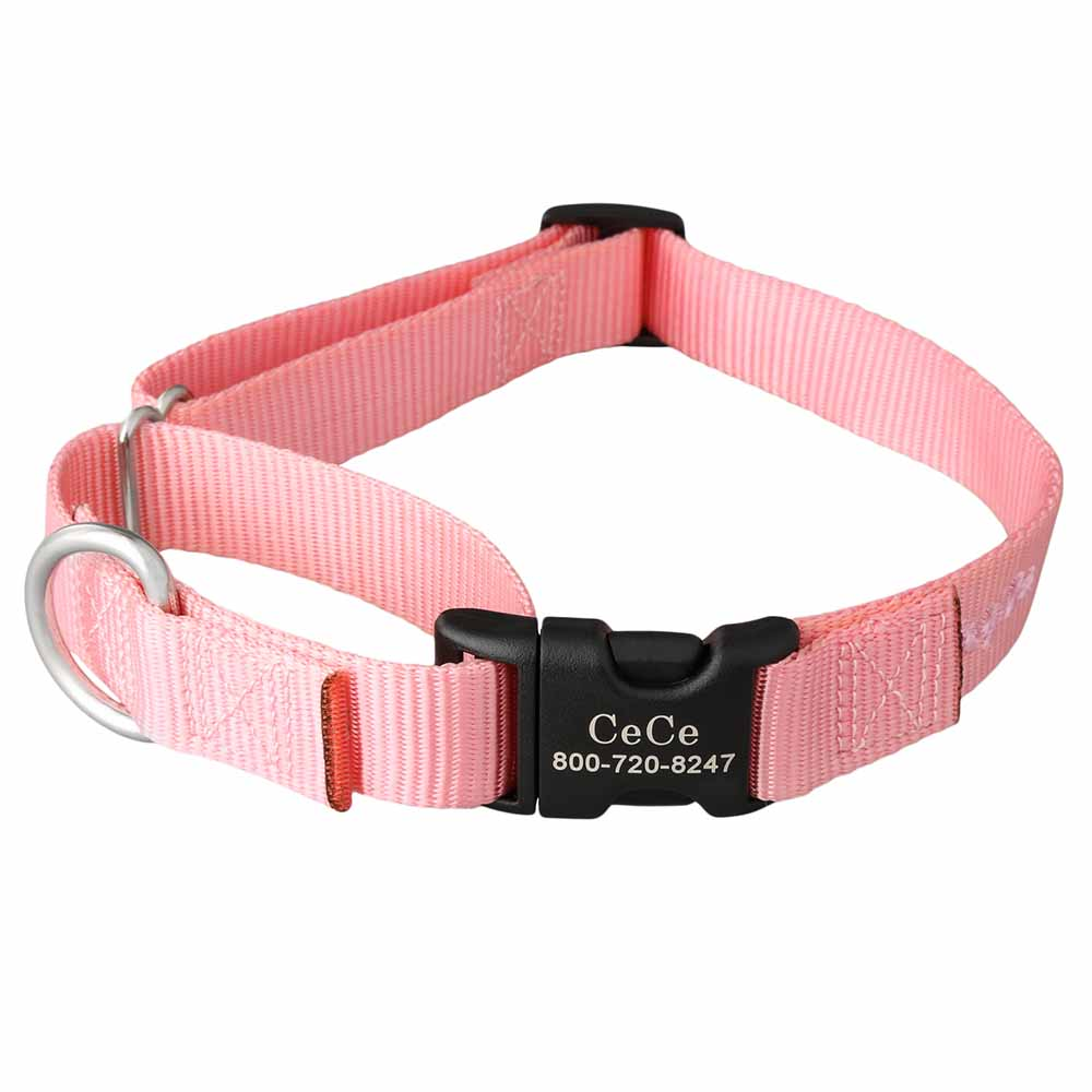 Martingale Dog Collar with Personalized Buckle Pink