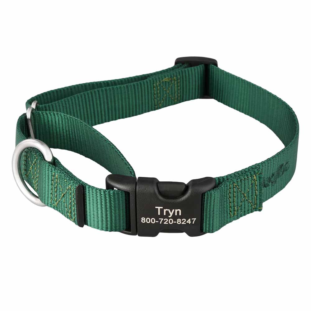 Martingale Dog Collar with Personalized Buckle Hunter Green