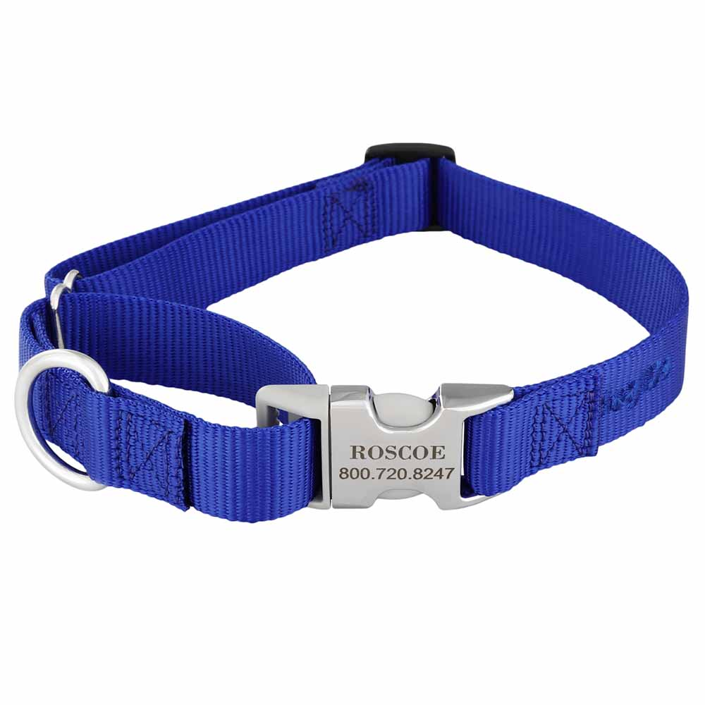 Martingale Dog Collar with Personalized Buckle Blue Hybrid Buckle