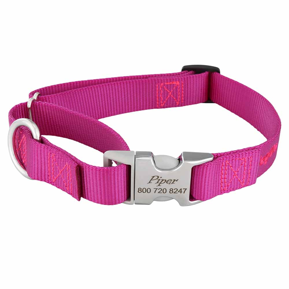 Martingale Dog Collar with Personalized Buckle Raspberry Hybrid Buckle