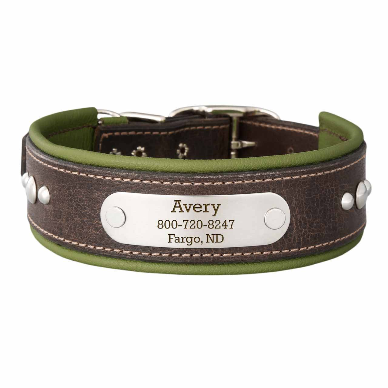 Orion Artisan Padded Leather Dog Collar with Nameplate Avocado