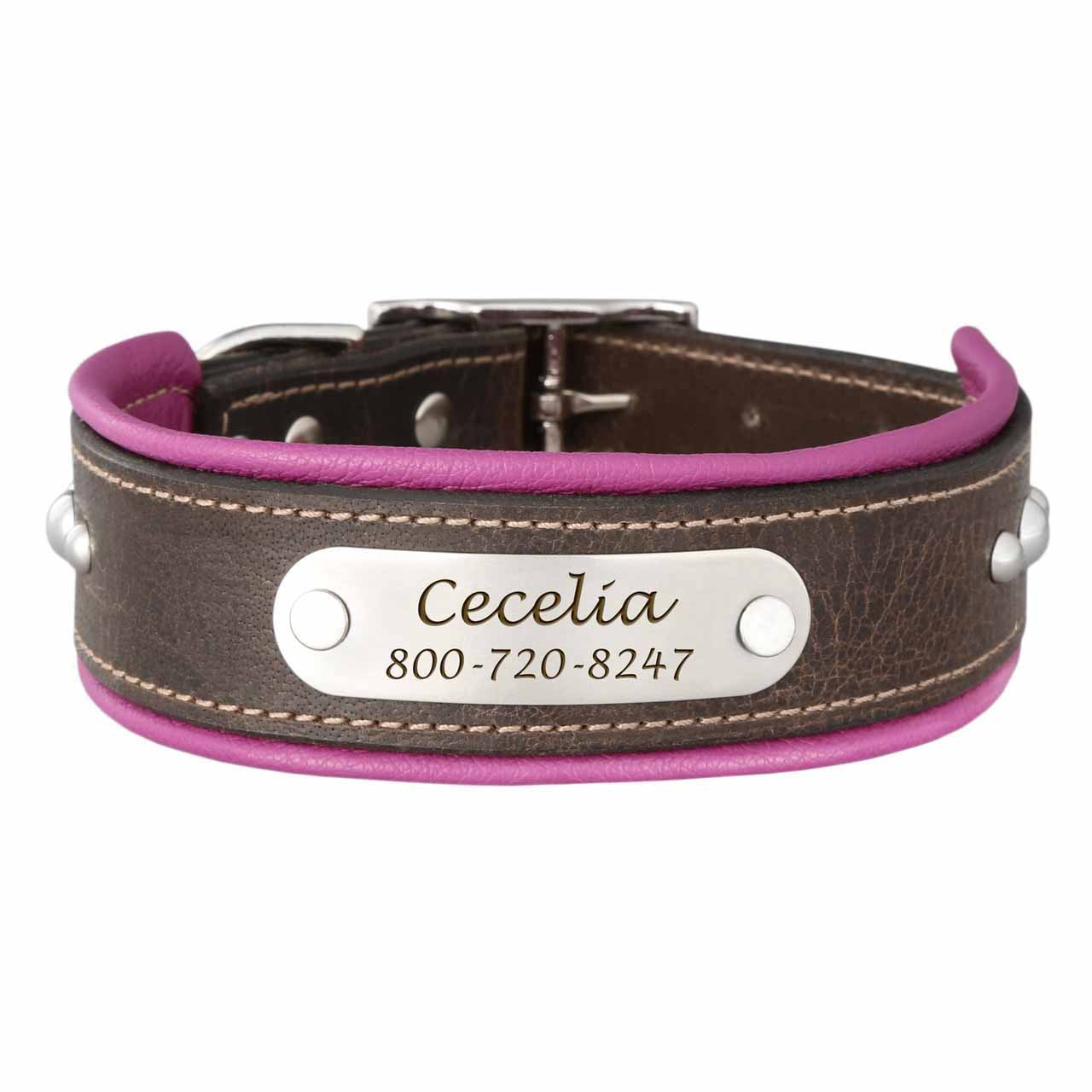 Orion Artisan Padded Leather Dog Collar with Nameplate Magenta
