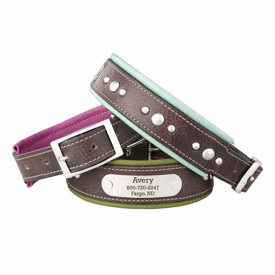 Orion Artisan Padded Leather Dog Collars with Personalized Nameplate