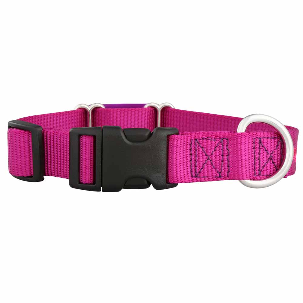 Color Splash ScruffTag Personalized Nylon Dog Collar Raspberry Buckle View