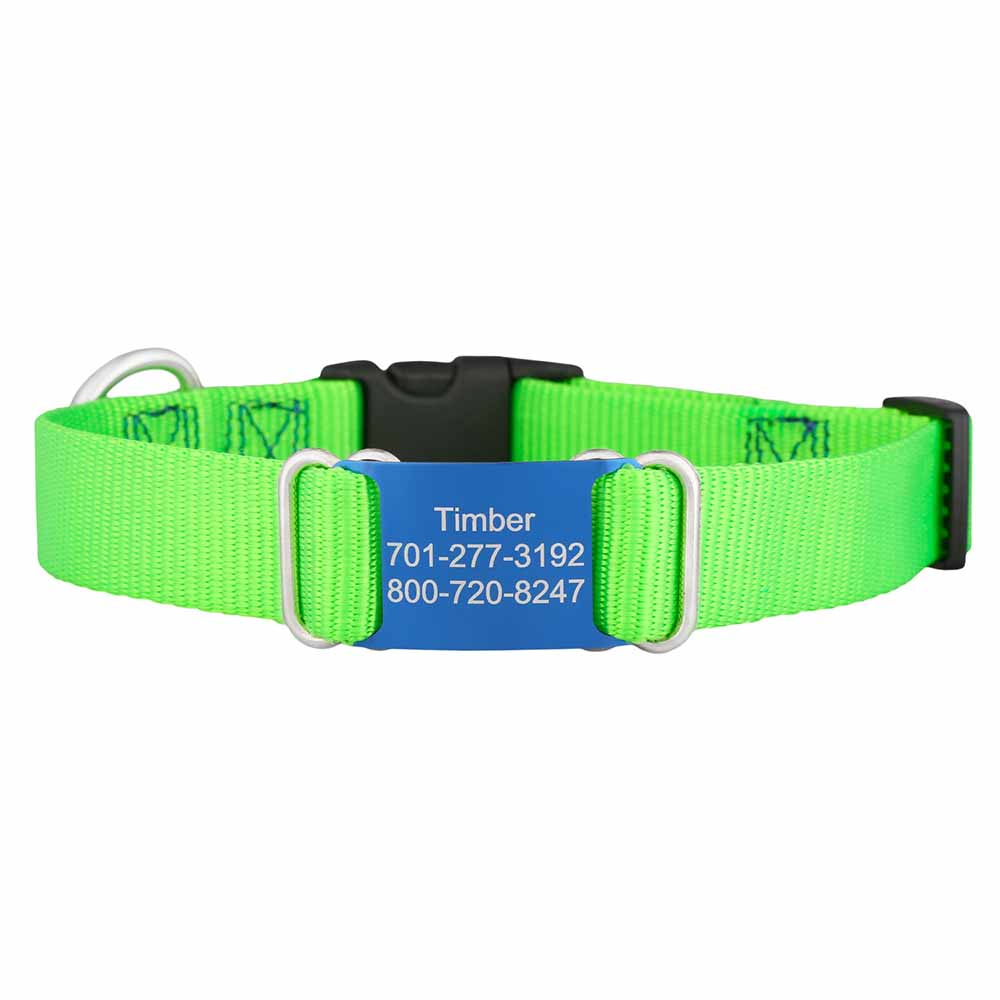 Color Splash ScruffTag Personalized Nylon Dog Collar Lime Green Blue