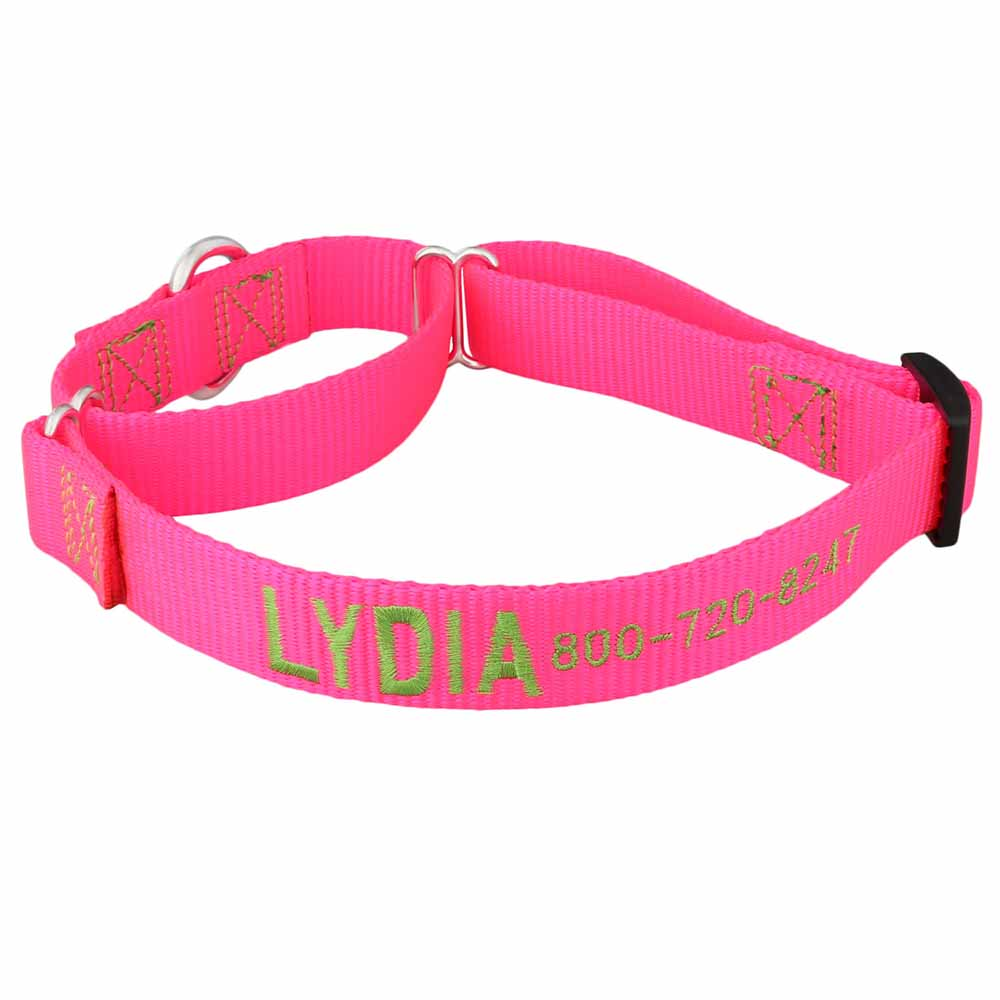 Embroidered Martingale Nylon Dog Collar Hot Pink Lime Green