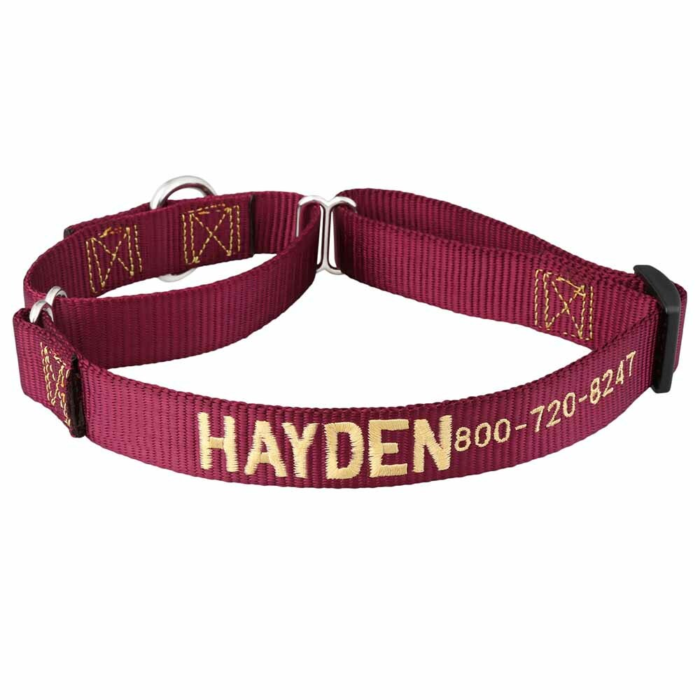 Embroidered Martingale Nylon Dog Collar Burgundy Yellow