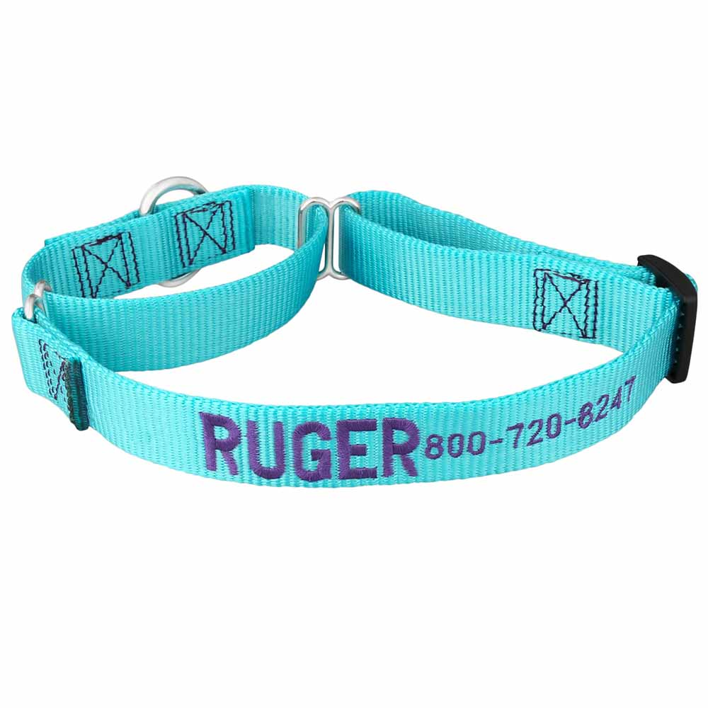 Embroidered Martingale Nylon Dog Collar Turquoise Purple