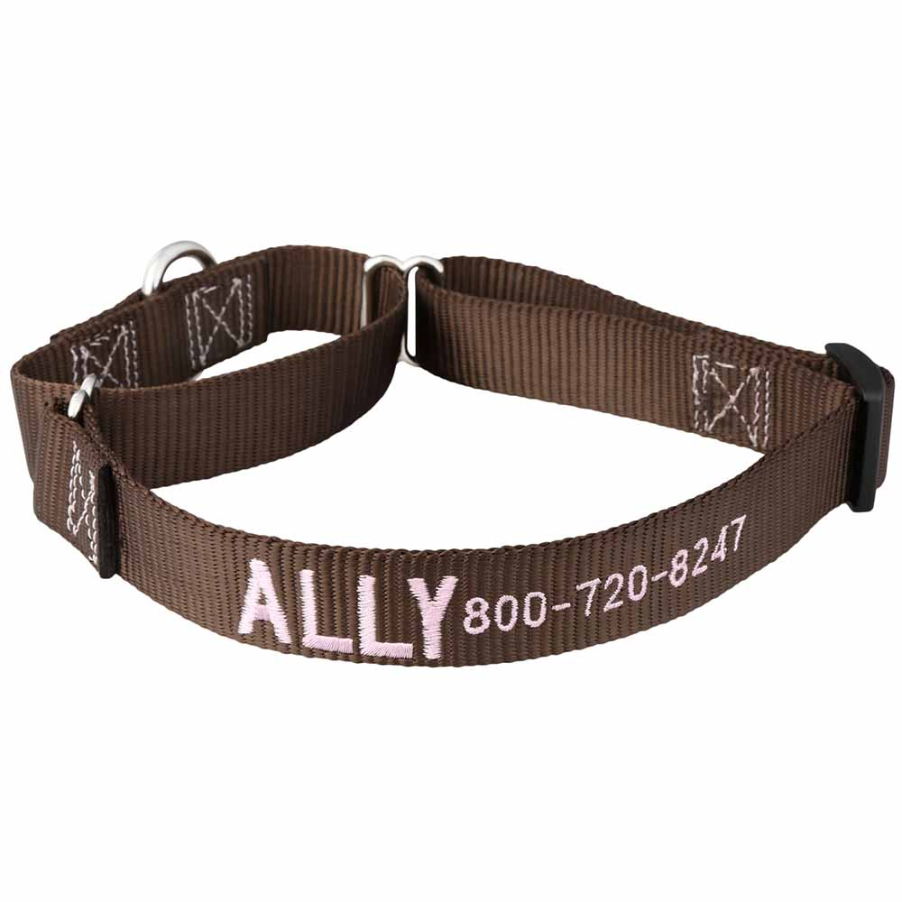 Embroidered Martingale Nylon Dog Collar Brown Pink