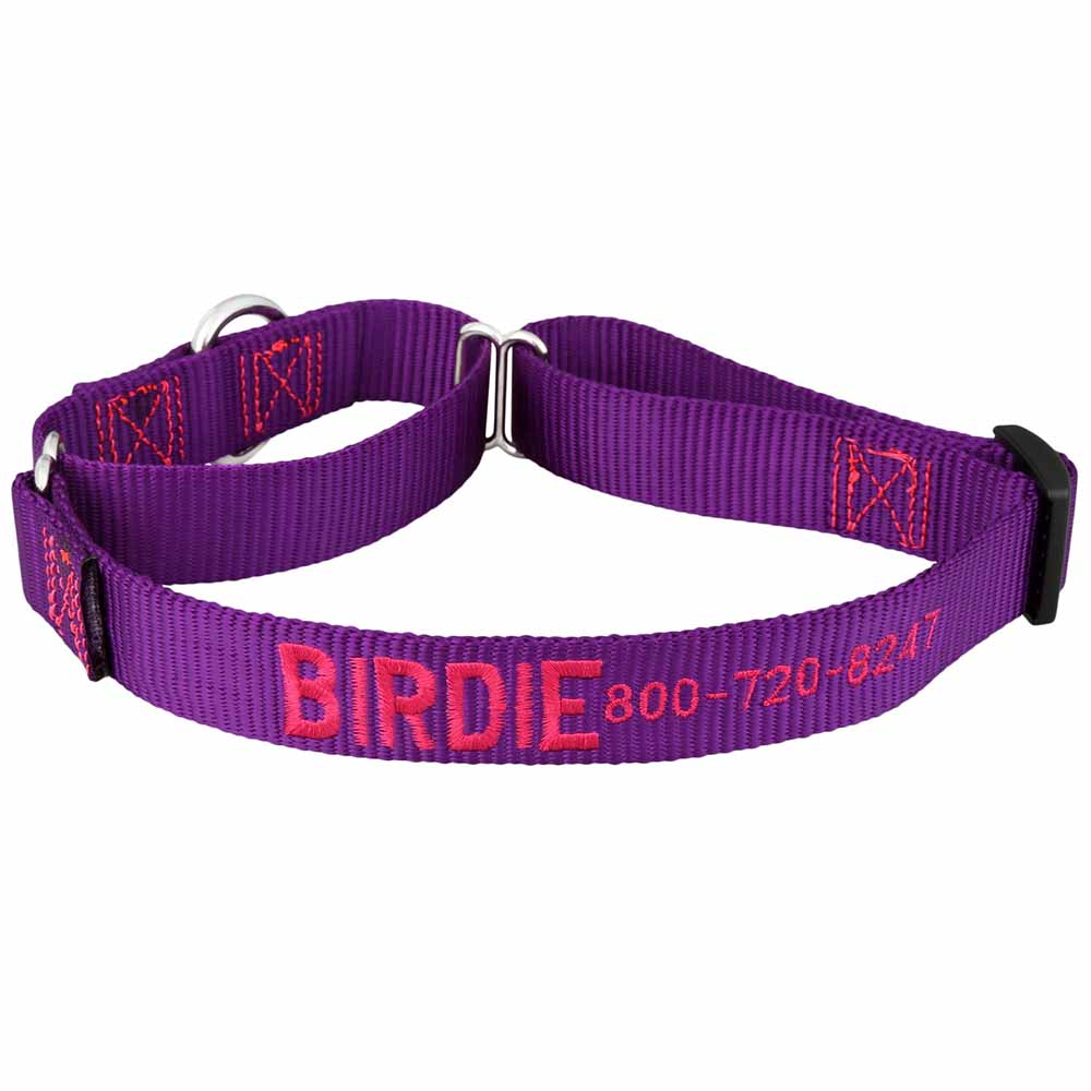 Embroidered Martingale Nylon Dog Collar Purple Hot Pink