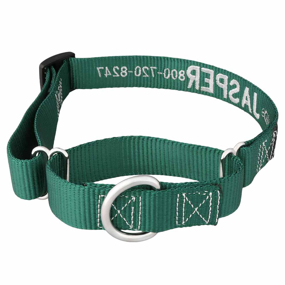 Embroidered Martingale Nylon Dog Collar Hunter Green Back View