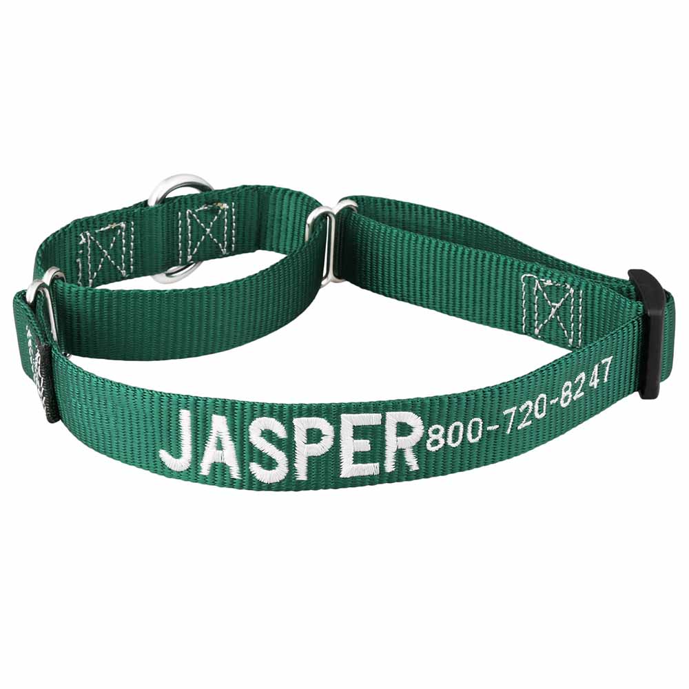 Embroidered Martingale Nylon Dog Collar Hunter Green White