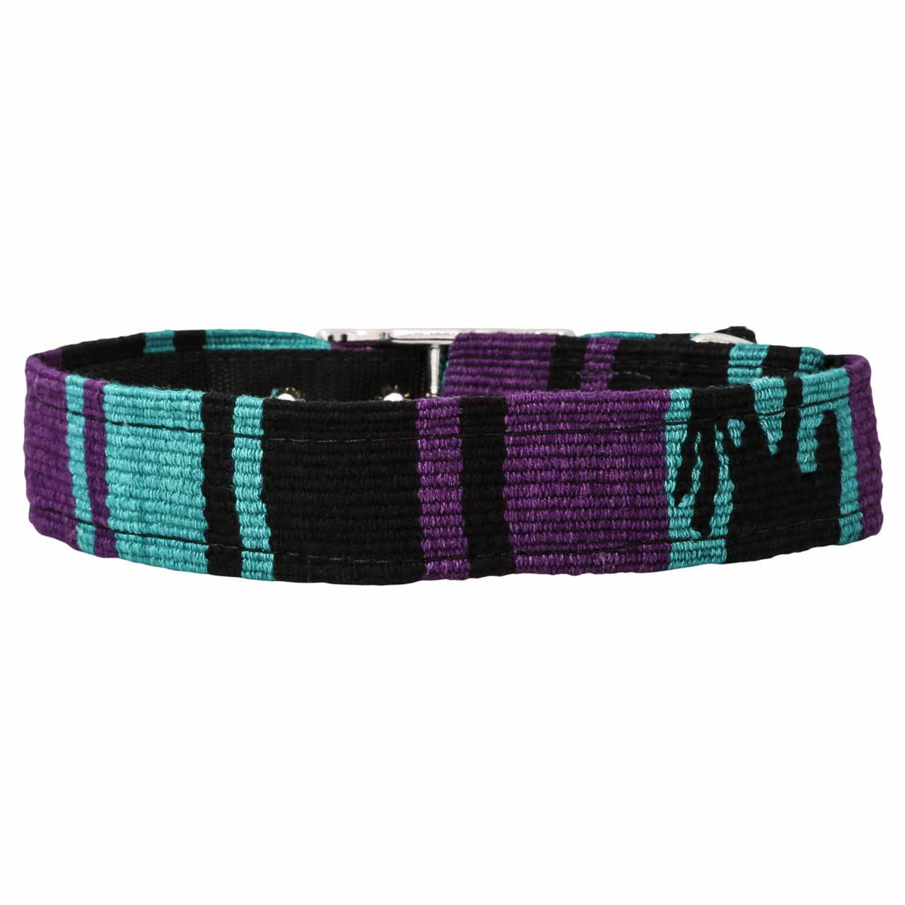 MAYA Buckle Dog Collar - V2