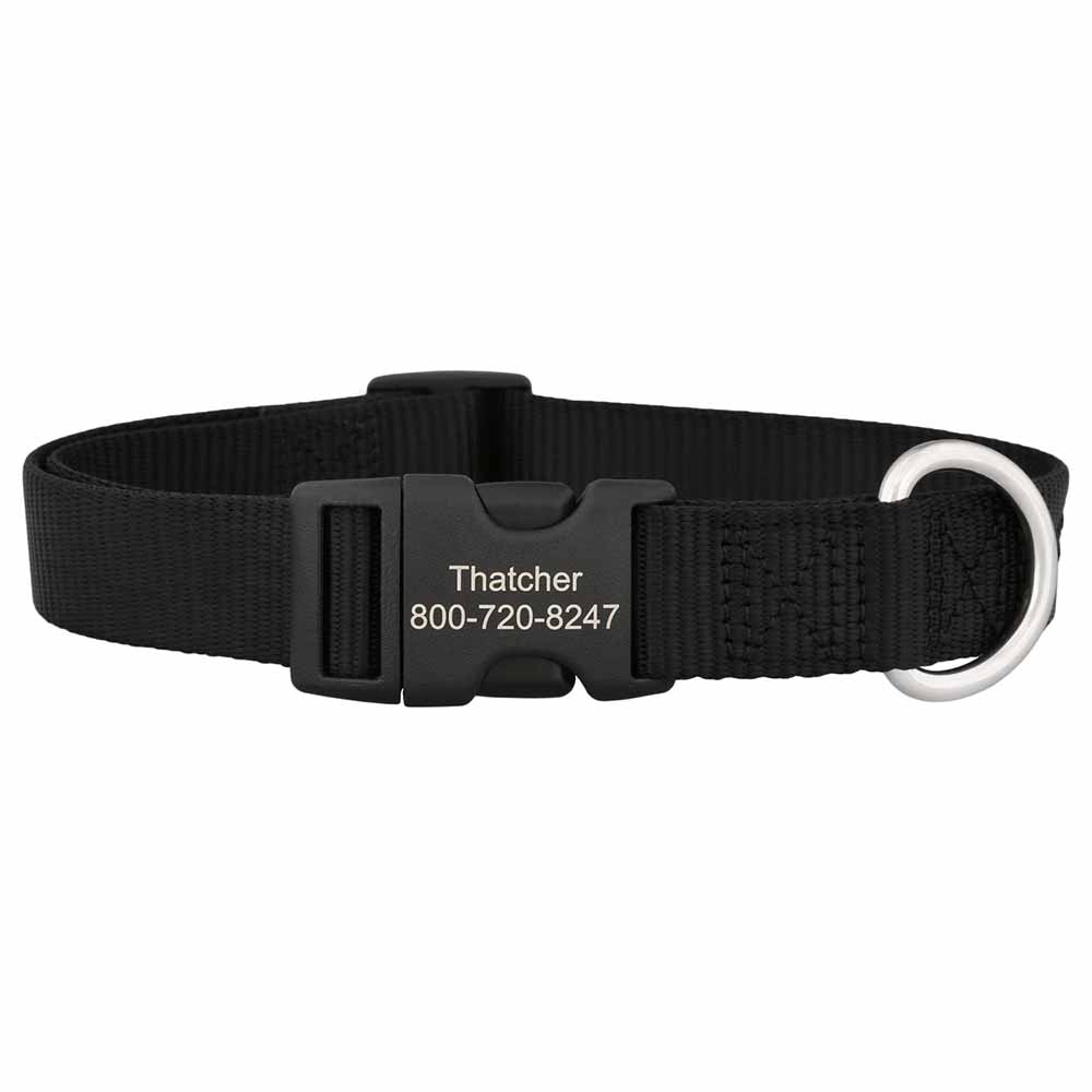 Personalized Buckle Nylon Dog Collar Black