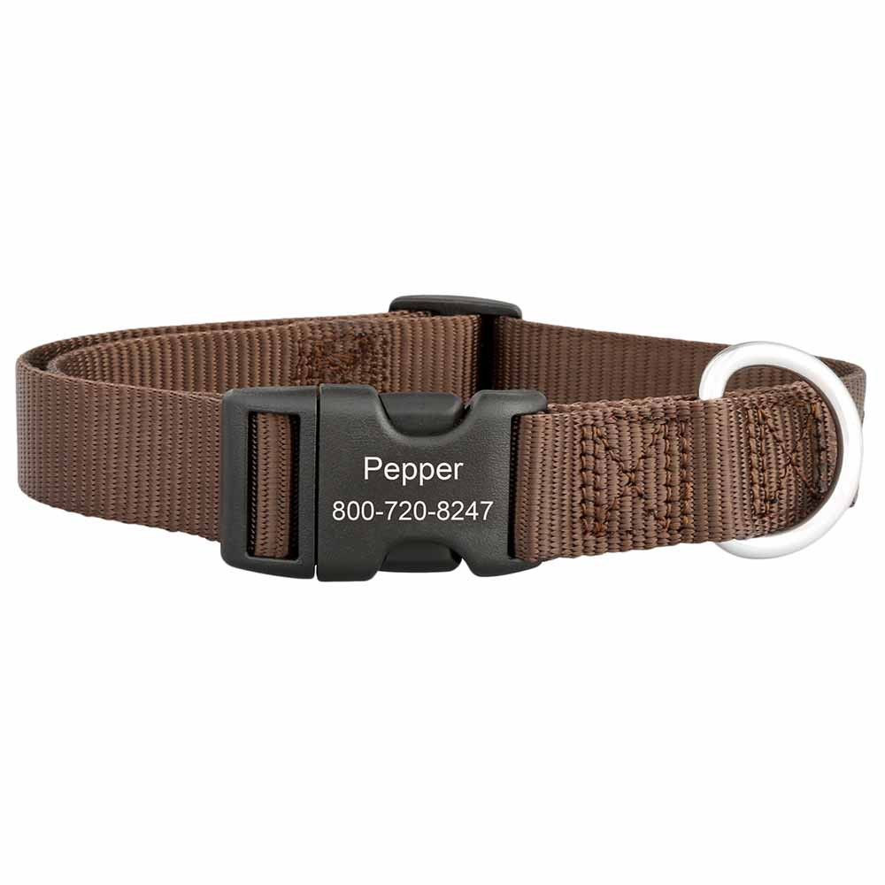 Personalized Buckle Nylon Dog Collar Brown