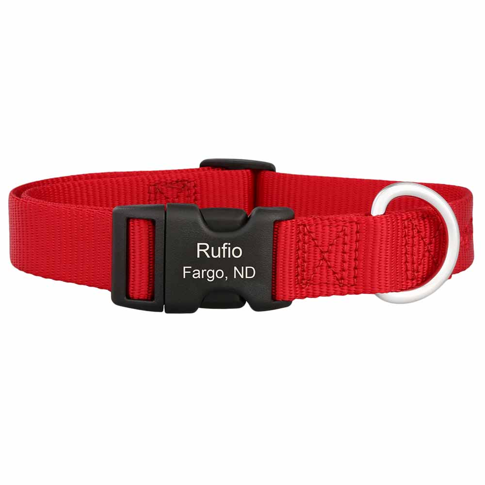 Personalized Buckle Nylon Dog Collar Red