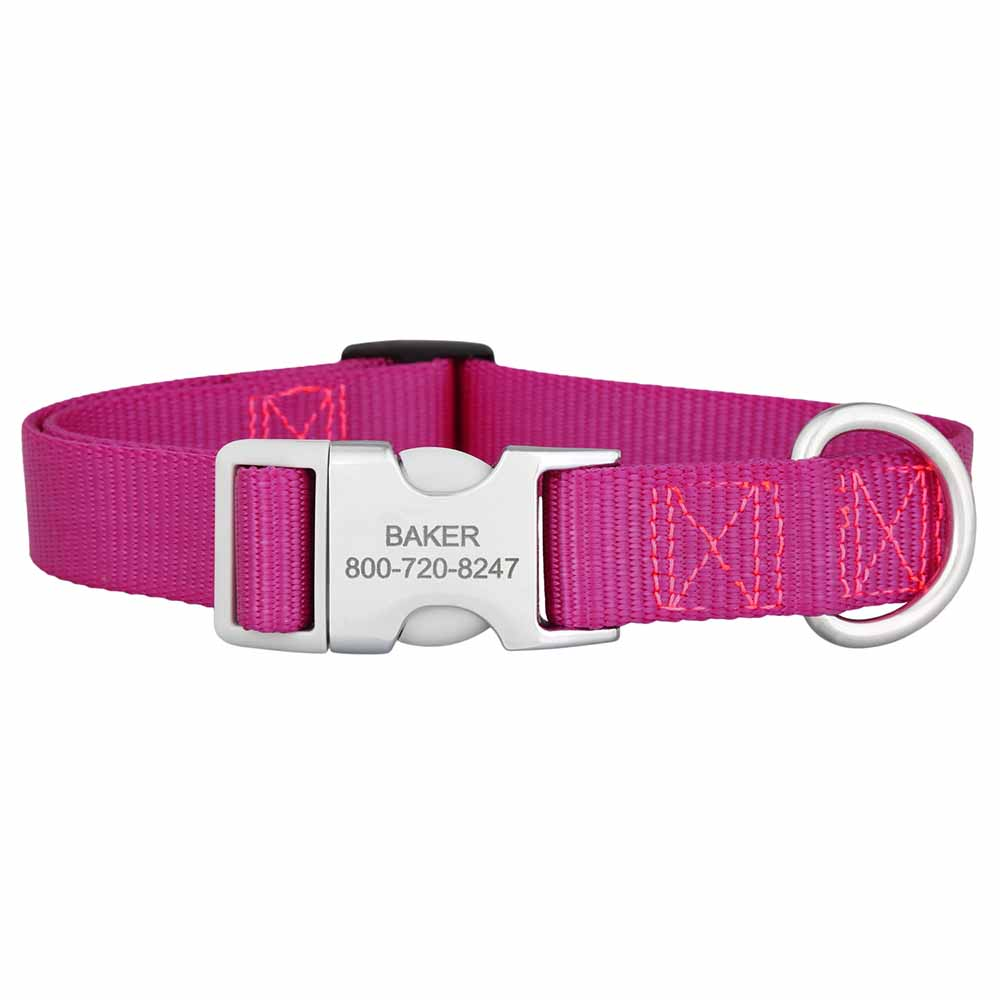Personalized Buckle Nylon Dog Collar Raspberry