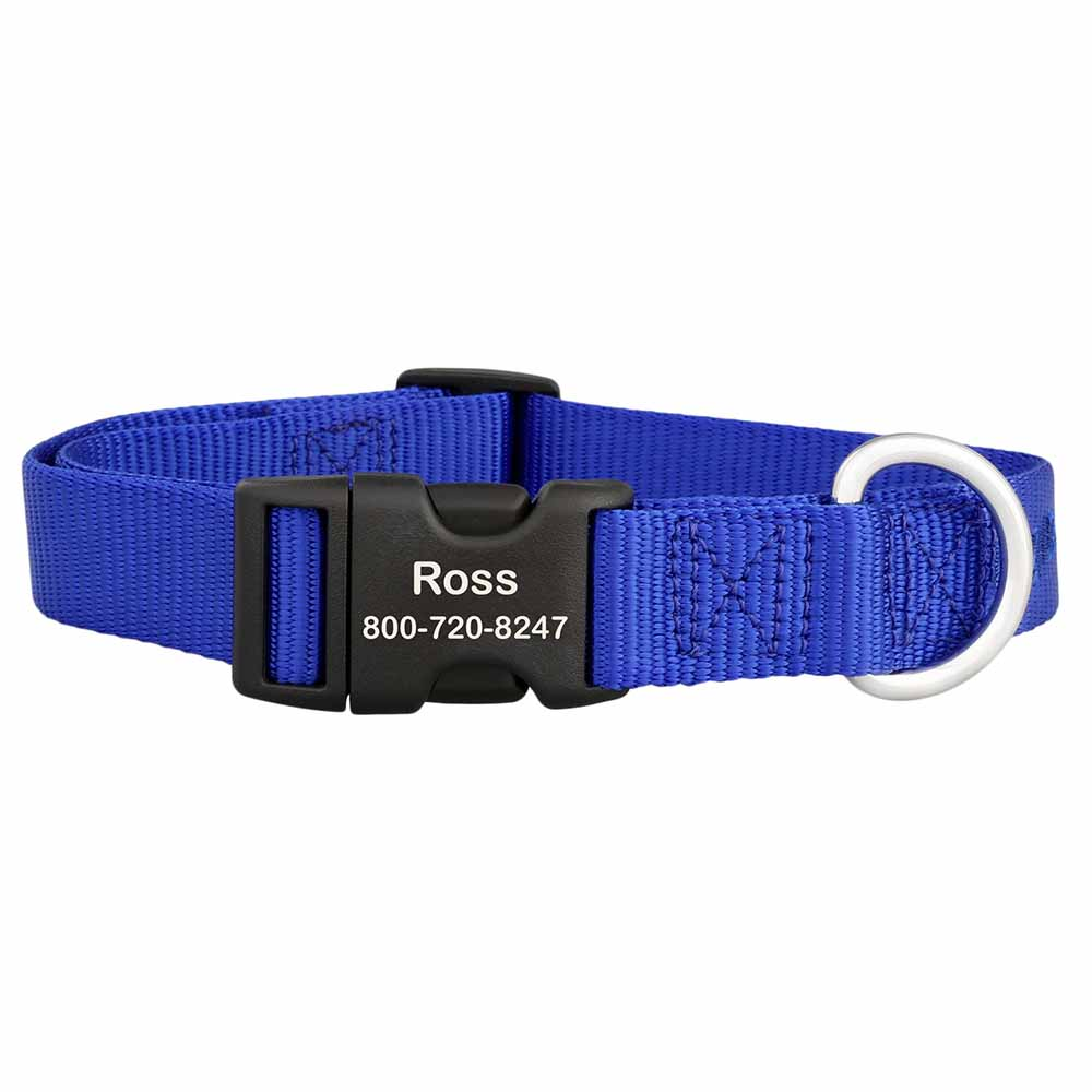Personalized Buckle Nylon Dog Collar Blue