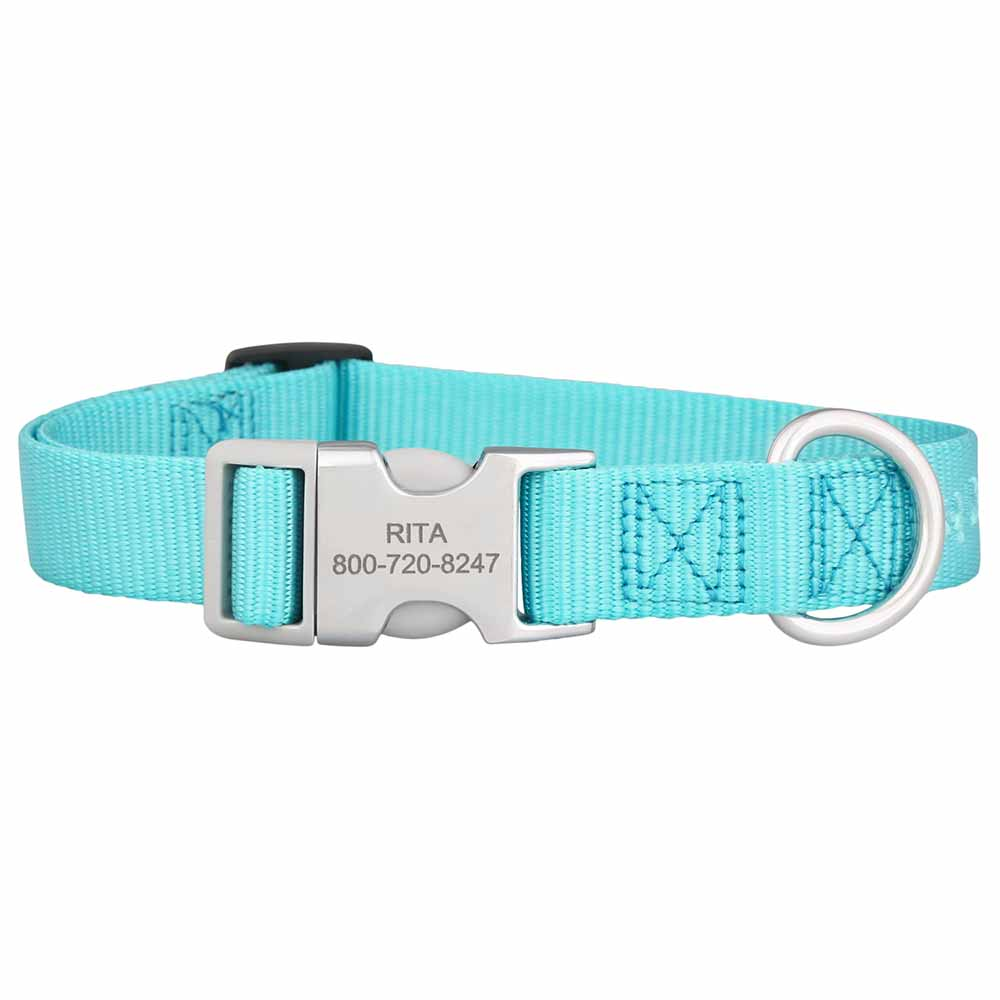 Personalized Buckle Nylon Dog Collar Turquoise