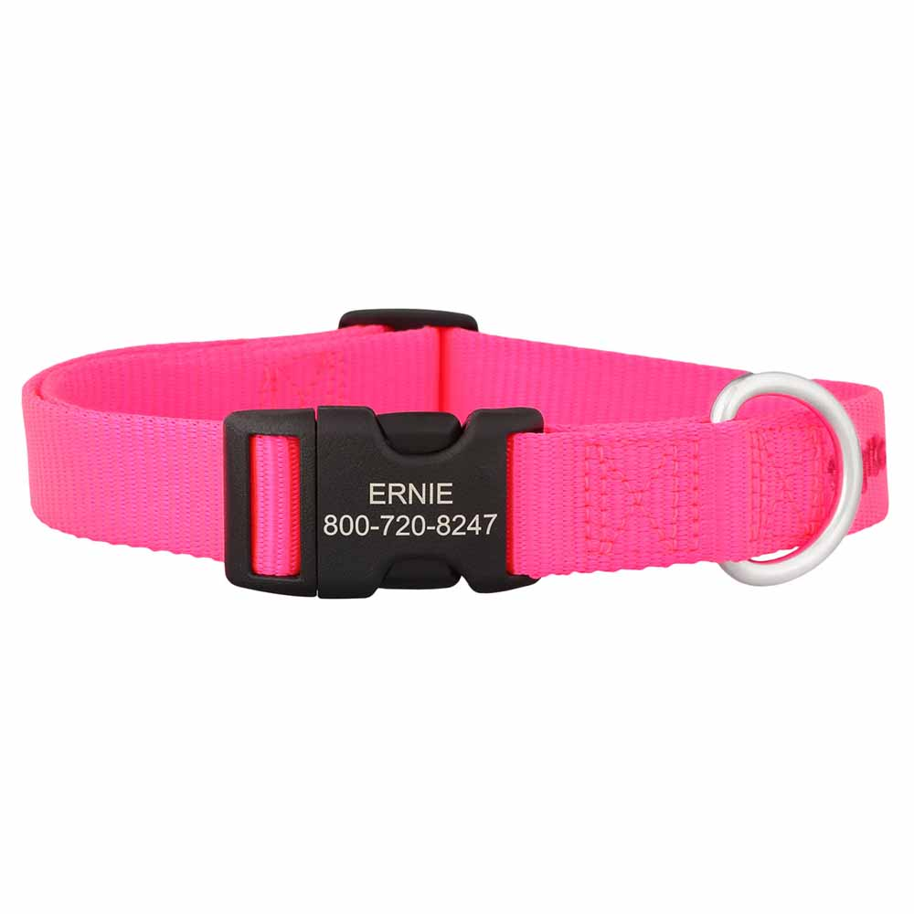 Personalized Buckle Nylon Dog Collar Hot Pink