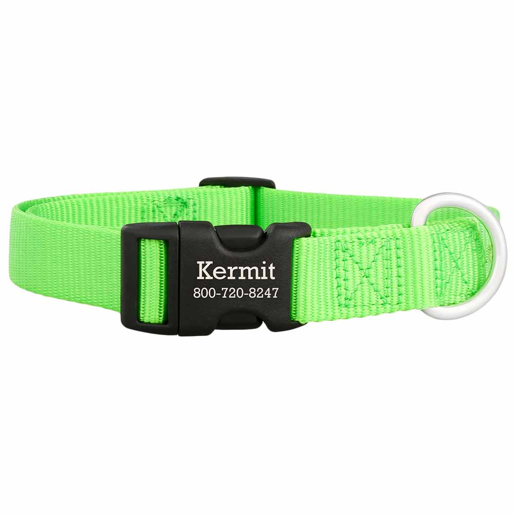 Personalized Buckle Nylon Dog Collar Lime Green