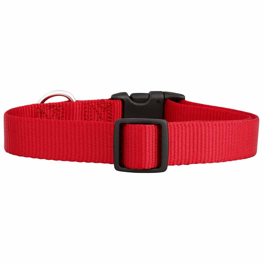 Personalized Buckle Nylon Dog Collar Red Back