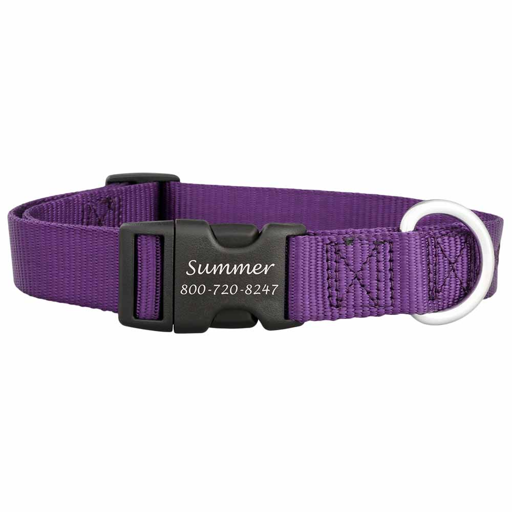 Personalized Buckle Nylon Dog Collar Purple